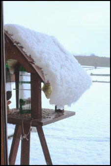 Snowy bird table